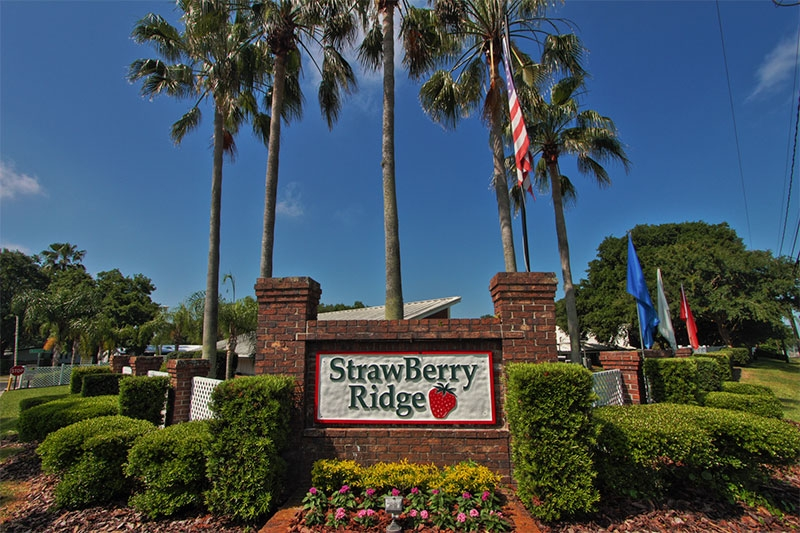 StrawBerry Ridge Lifestyle Gallery